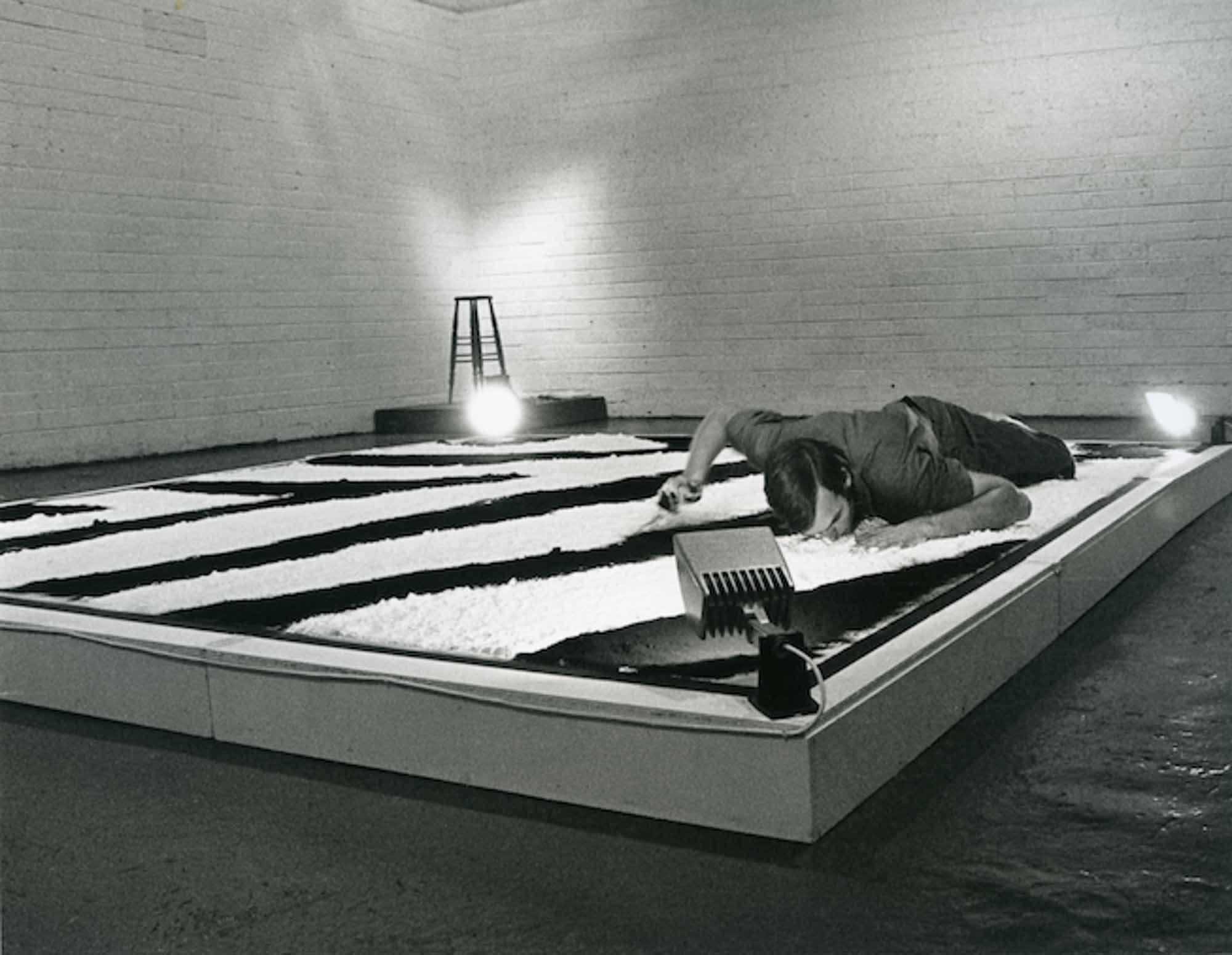 Nigel Rolfe, Zebra Time Space Series, (1978). Project Arts Centre, Dublin, Ireland.